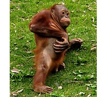 Orang-utan Itch Photographic Print