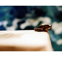 Frog disgust Photographic Print