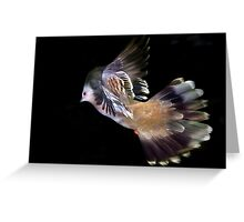 Fly and Be Free Greeting Card