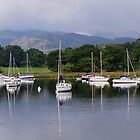 Boats on Windermere by Carol Bleasdale