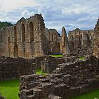 Rievaulx Abbey 1 by Ray Clarke
