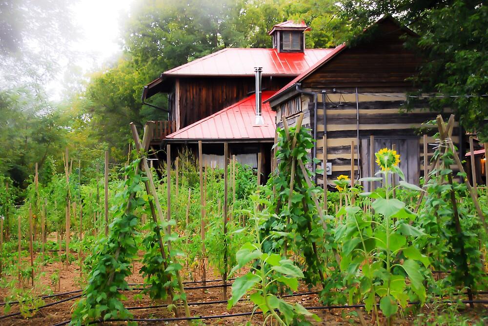 Backyard Garden by Jeanne Sheridan