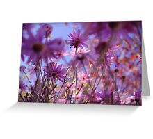 Lost Among The Daisies Greeting Card