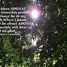 Psalms 34 In the rays of the Son by Dawnsuzanne