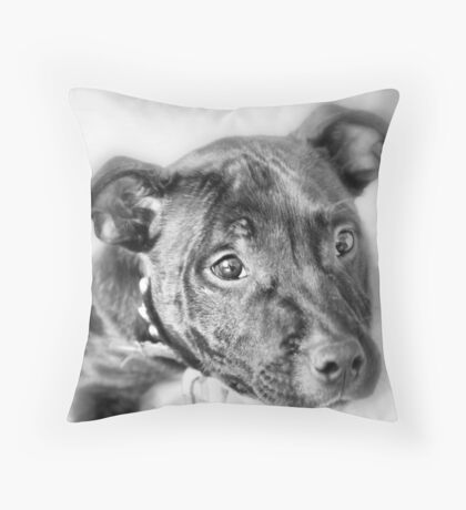 Marley The Staffordshire Bull Terrier Throw Pillow