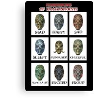 Expressions of DragonPriests Canvas Print