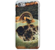 Rotting Halloween Pumpkin iPhone Case/Skin