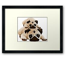 Cute Pugs Framed Print