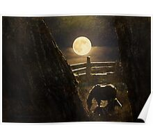 Moonlight for Horses Poster