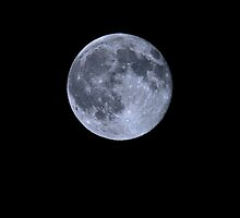 The Blue Moon of July 2015 by Otto Danby II