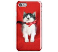 In Memory of Don Draper - A Rescue Cat iPhone Case/Skin