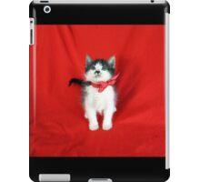 In Memory of Don Draper - A Rescue Cat iPad Case/Skin