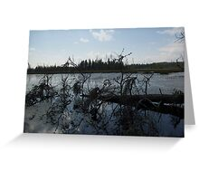peace and quiet Northern Ontario Greeting Card