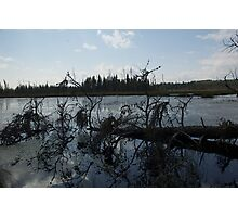 peace and quiet Northern Ontario Photographic Print