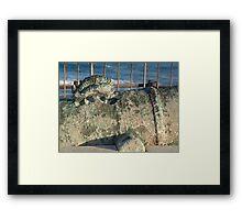 Sacramento Cannon Framed Print