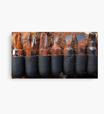 Rusty screwdriver bits Canvas Print