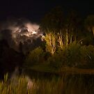 Lakewood Park lightning storm by Larry  Grayam