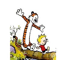 Calvin and Hobbes across the river by mikelpegel