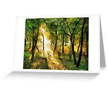 Sunshine pathway Greeting Card
