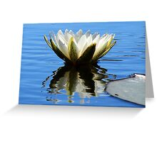 Delta Lily III Greeting Card