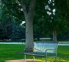 Empty Bench in the Morning by Paul Gana
