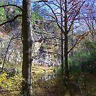 Arkansas,Buffalo River at Kyles Landing by David  Hughes
