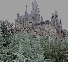 Hogwarts Castle by leystan