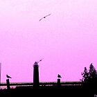 Muskegon, MI Lighthouse - Lavender Hue by Deb  Badt-Covell