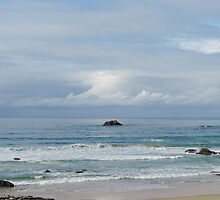 Seascape - Town Beach, Port Macquarie by Marilyn Harris