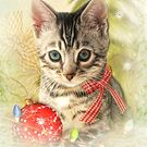 Kitty Christmas by Trudi's Images