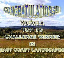 top challenge winner east coast landscapes by vigor