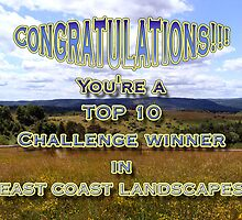 top challenge winner east coast landscapes by vigor