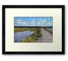 Salt Marsh Trail Framed Print