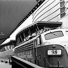Scenic Railway and Hilton  by Danielle Cardenas