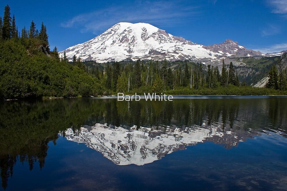 Bench Lake, Mt. Rainier National Park (US) by Barb White
