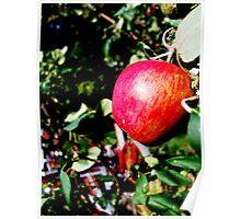 Poison Apple Poster