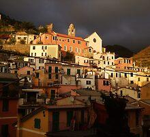 vernazza - hillside by dawshoss