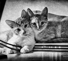 A couple of tots by © Kira Bodensted
