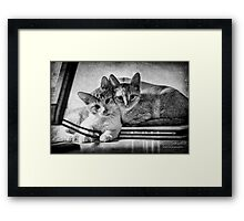 A couple of tots Framed Print