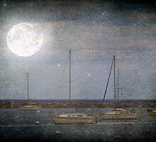 Sail Boats Asleep Beneath the Harvest Moon © by Dawn M. Becker