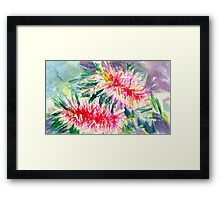 Pink Bottlebrush Rectangle Framed Print
