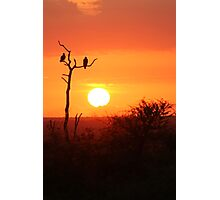 Kruger Sunrise Photographic Print