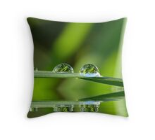 Water Reflection Throw Pillow
