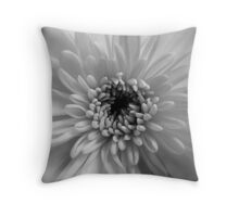 Personal Capacity Throw Pillow
