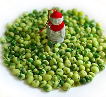 Monk and Wasabi Pea Flock by berndt2