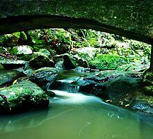 Picnic Falls - Sunshine Coast Qld Australia by Beth  Wode