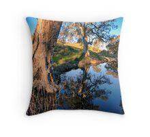 Mannum Falls Reflections Throw Pillow