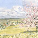Cherry Blossom in the Dordogne (revised) by ian osborne