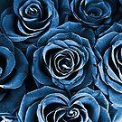 Rose Bouquet in Blue by Igor Shrayer