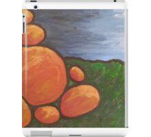 Australian Marbles iPad Case/Skin